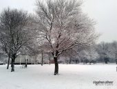 Winter Snow, Central Park, Dartford