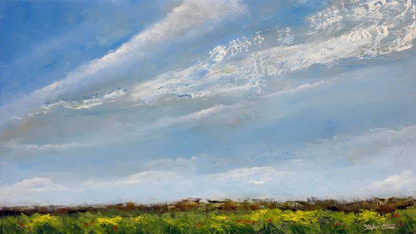 Fields of Sky